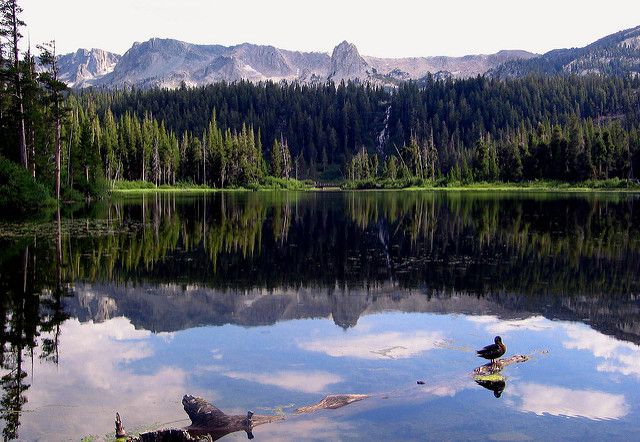 Fishing at mammoth lakes adventure in camping for Mammoth lakes fishing