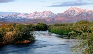 AIC Owens River Bishop
